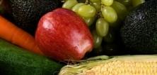 Frugt og Grønt