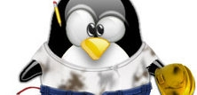 Linux som server